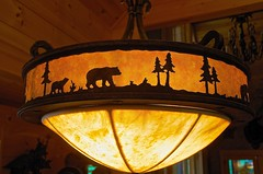 Wildlife Hanging Lamp (imageClear) Tags: bear lighting light mountain home lamp forest photo nikon flickr image wildlife bears northcarolina domestic western photostream hanginglamp 18200mm d7000 imageclear