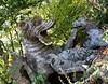 Bomarzo - Parco dei mostri: Il Drago (+2K views!!!) (El Peregrino) Tags: italy sculpture italia dragon drago bomarzo scultura parcodeimostri yourcountry