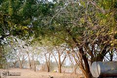 8614448544_0cd3ee6485_o (Mashael88) Tags: photography photo     mashael   mashaelahmed