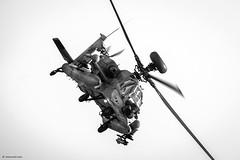 IAF Boeing AH-64D Apache Longbow, Saraf (serpent ) (xnir) Tags: israel apache helicopter boeing serpent airforce nir longbow iaf israelairforce saraf ah64d xnir  idfaf