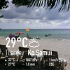 Koh Samui Weather 12 Nov.2013 (soma-samui.com) Tags: thailand island kohsamui chaweng tourguidesoma somasamuicom タイ サムイ チャウエン ツアーガイドsoma  ビーチ beach