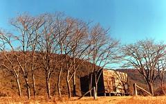Rolly's Rendezvous Creek hut (since destroyed by a bushfire) 2000, Rendezvous Creek, Namadgi National Park, Canberra ACT Australia (John Panneman Photography (AcePanno)) Tags: 2000 australia hut alpine canberra act rendezvous namadgi namadginationalpark rendezvouscreek