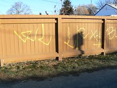 WASTELANDS- LA RAZA 14 (northwestgangs) Tags: graffiti gangs yakima lr nsv crips nortenos