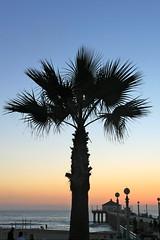IMG_3321 (cadbury_63) Tags: california discoverla