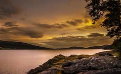 Sunset at loch fyne (LoveMyTinyCamera) Tags: sunset seaweed clouds lochfyne d7000