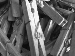 Clothespins (jgimbitzki) Tags: photo foto pins clothes clothespins roupas prendedores