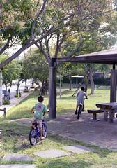 上地 自転車に乗る子どもたち Okinawa-si, Okinawa (ymtrx79g ( Activity stop)) Tags: street color slr film bicycle japan analog nikon kodak 35mmfilm okinawa 135 沖縄 kodakgold100 自転車 街 写真 銀塩 フィルム nikonnewfm2 沖縄市 nikonainikkor50mmf14 歩行走行 walkandrun 201310blog okinawasi