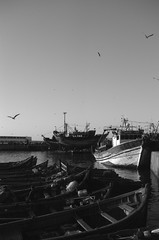Scan-131230-0026-3.jpg (mathendrix) Tags: africa analog harbor blackwhite fishing ship marrakech nikonf3 essaouira marroco roll4 homedeveloping 2013 nikoncoolscan5000ed agfaortho25