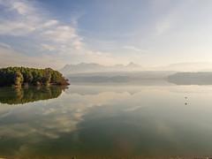 Al vuelo  - Explore January 4th, 2014 (Micheo) Tags: bird magic pantano reservoir explore pajaro presa magia embalsedelcubillas