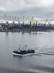 Riga Coal Terminal (PriscillaBurcher) Tags: port harbor dock crane baltic latvia transportation coal trade riga export daugava rigalatvia oceantransport portofriga rigacoalterminal l1070041