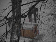 snow doghouse brigittebardot ninsoare zăpadă maidanez iarnă vierpfoten patrulăbuţe coteţdecâine