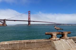 Fort Point Wharf - San Francisco, California