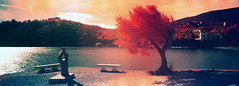 Port- lligat (santisss) Tags: bw panorama orange color 35mm ir kodak hasselblad filter panoramica ektachrome naranja e6 xpan infared portlligat cadaqués expiredfilm filtre eir filtro infrarrojo 099 infraroig
