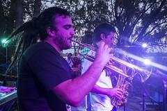 2014-02-22 - Tu Conexzion - Festival Pasto - Foto de Marco Ragni