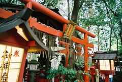 (yuwy*) Tags: film japan kyoto natura fujifilm classica