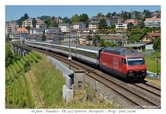 Re 460 074-8 - Paudex (CC72080) Tags: train sbb locomotive cff re460 paudex interrégio