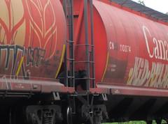 Whats up buddy! (YardJock) Tags: railroad nature graffiti wildlife spraypaint piece hopper blackbear freighttrain rollingstock moniker benching paintedsteel benchreport