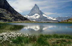 das Matterhorn (welenna) Tags: mountains mountain matterhorn flowers wasserspiegel water wasser relief reflection wallis riffelsee