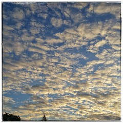 Clouds - morningsky (noisy__nisroc) Tags: sky clouds instagram mobil