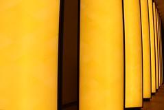Paris - Fondation Louis Vuitton (corno.fulgur75) Tags: fondationlouisvuitton fondation louisvuittonfoundation foundation louisvuitton vuitton paris france iledefrance portedauphine 16earrondissement museum musée art centreculturel culturalcentre july2016 frankgehry gehry parís parigi parijs paryż paříž francia frança frankrijk frankreich frankrig frankrike francja francie artwork olafureliasson eliasson
