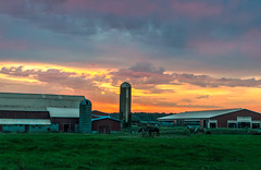 Sunrise at the Silo (tquist24) Tags: hdr indiana nikon nikond5300 barn buildings clouds farm geotagged horse horses morning red rural silo sky sunrise middlebury unitedstates