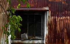 A Private Haven (Junkstock) Tags: aged agedwindow buildings building corrosion corroded color decay decayed distressed downeast exterior maine photo photography photograph photos photographs patina rustic ruralexploration rural rust rusty rusted textures texture weathered wall windows window