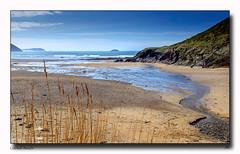 Cornish Beach (jeremy willcocks) Tags: cornishbeach cornwall uk northcoast reeds sand stream sea landscape cliffs people sun sunny bluesky jeremywillcocks wwwsouthwestscenesmeuk fujixt1 colour