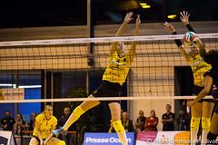_MG_1565 (Pierre-Emmanuel Jolivot) Tags: nantes vbn pej volley mulhouse