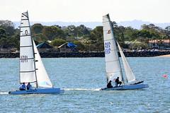 DSC_0363 (LoxPix2) Tags: loxpix queensland australia sailing catamaran trimaran nacra hobie arrow moth 505 maricat humpybongyachtclub humpybash aclass f18 mosquito laser bird spinnaker woodypoint