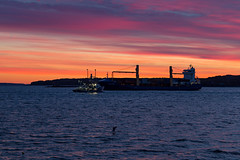 Two Ships Passing in the Dawn (Bob90901) Tags: ships dawn portland maine sunrise 2016 september 0619 civiltwilight bluehour canon 6d canonef70200mmf28lisiiusm canon70200f28lll fishingvessel containership autumn sea morning ocean harbor sky color light water