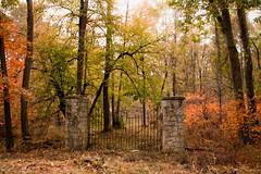 Autumn 2016 is here (Lynne Dohner) Tags: autumn colorsofautumn explorer indianadunesnationallakeshore lakemichigan lynnedohner midwestliving portercounty portercountyindiana visitindiana seasons