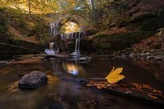 Autumn mood (Dora Apostolova (dority)) Tags: sitovo waterfall autumn roman bridge leaf river bulgaria rhodope mountain