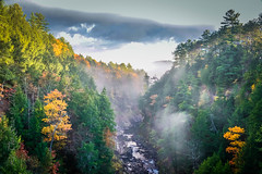 Quechee Gorge  in Early Morning Fog (In Explore) (Le Tho Giao) Tags: fall foliage vermont color quecheegorge outdoor landscape fog