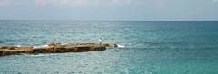 14IS047 Mediterranean Sea (Michael L Coyer) Tags: israel mediterranian mediterraniansea sea seashore shore caesarea caesareamaritine caesareamaritimus caesareamaritimum fishing