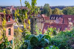 _MG_4836_7_8.jpg (nbowmanaz) Tags: germany places europe halberstadter quedlinburg