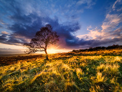 Divine light (Stephen Elliott Photography) Tags: peakdistrict hopevalley derbyshire lawrence field longshaw estate evening sunset autumn olympus em1 714mm nisi filters