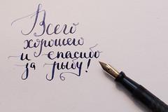 _MG_0790 (leegooroo) Tags: gustave fischer fountain pen flex