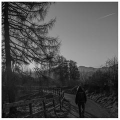 Walking alone (Gianluca Perseu) Tags: mountain action walk mountainphoto nature naturephoto nikon landscape landscapephoto intothenature longwalk nikonphotography italy friend