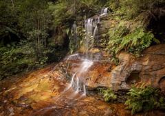 Cataract Falls (affectatio) Tags: cataractfalls waterfall waterfalls falls southlawsonwaterfallcircuit lawson bluemountains nsw newsouthwales sony a77mk2 a77ii tokina 1116mm