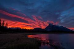 Burning Sky (Daniel.Peter) Tags: banffnationalpark canada flickr kanada schilf schilfgras see sonnenaufgang vermillionlakes wolken clouds dpe3x lake reed sunrise burningsky