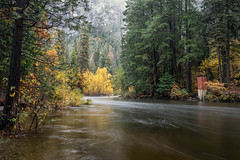 Yosemite High Water (Kirk Lougheed) Tags: california mercedriver usa unitedstates yosemite yosemitenationalpark yosemitevalley autumn bank fall forest landscape nationalpark outdoor river water