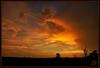 My field of dreams (WanaM3) Tags: wanam3 sony a700 sonya700 texas houston elfrancoleepark park vista scenic dusk twiligth redsky