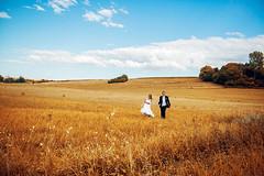 ich rieche den Sommer frmlich noch haha  bald wieder unterwegs mit meinem Sigma ART 24mm in Weizenfeldern! #hochzeitsfotograf #hochzeitsfotografie #stuttgart #karlsruhe (hochzeitsfotograf.stuttgart) Tags: hochzeitsfotograf hochzeitsfotografie hochzeit hochzeitsbilder braut brutigam brautpaar photoshop lightroom fotograf photographer photography wedding weddingphotographer bride groom couple