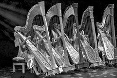When Angels Play (Anna Kwa) Tags: livingdreams opening harpists harps resortworldsentosa singapore annakwa nikon d750 afsnikkor70200mmf28gedvrii my angels music always dreams raveharpsensemble guzheng  chinesezither childaid2016