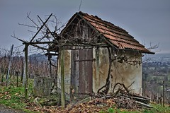 Old Hut in the Vineyard (wibblux) Tags: herbst badenwrttemberg decay house hut vineyard