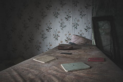 Bedtime stories (climbing the walls) Tags: wallpaper pattern books bag dark moody mystery single flowers nature old decay farmhouse abandonedfarmhouse justoneclick gonebutnotforgotten bygonetimes yesteryear naturallight oncewashome storieteller