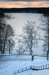 Cold winter morning | Dubingiai, Lithuania (trimailov) Tags: green tree landscape sunrise dawn orange winter cold dubingiai lithuania lietuva nikon d7000 longexposure circularpolarizer clouds asveja lake asvejalake 160s