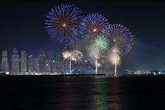National Day Fireworks 2016 (Sreejesh Kalari Valappil) Tags: ishootraw iamnikon fireworks nationalday uae dubai jbr nationaldayfireworks scenery d7100 night lights longexposure indubai inuae дубай