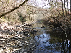 La Vende - Saint-Michel-le-Cloucq - Vende - Pays de la Loire - France (vanaspati1) Tags: la vende saintmichellecloucq pays de loire france rivire eau water river paysage vanaspati1 nature