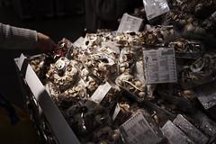 Potpourris of IKEA  ―Dofta (Cozy66) Tags: ilce7m2 sony α7ⅱ japan ikea store flower 日本 ソニー イケア fe28㎜f2